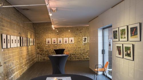 vue de l`expo à la galerie Lebon